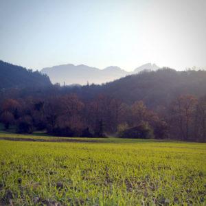 Champ-orge-Savoie